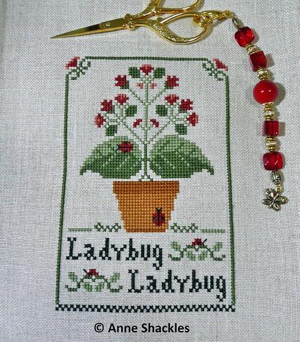LHN-Ladybug Ladybug