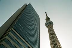 東京晴空塔, 東京天空樹, 新東京鐵塔, 押上, 東京, 日本, 東京タワー, とうきょうタワー, おしあげ, Tokyo Skytree, Tōkyo Sukaitsuri, Oshiage, Tokyo, Japan