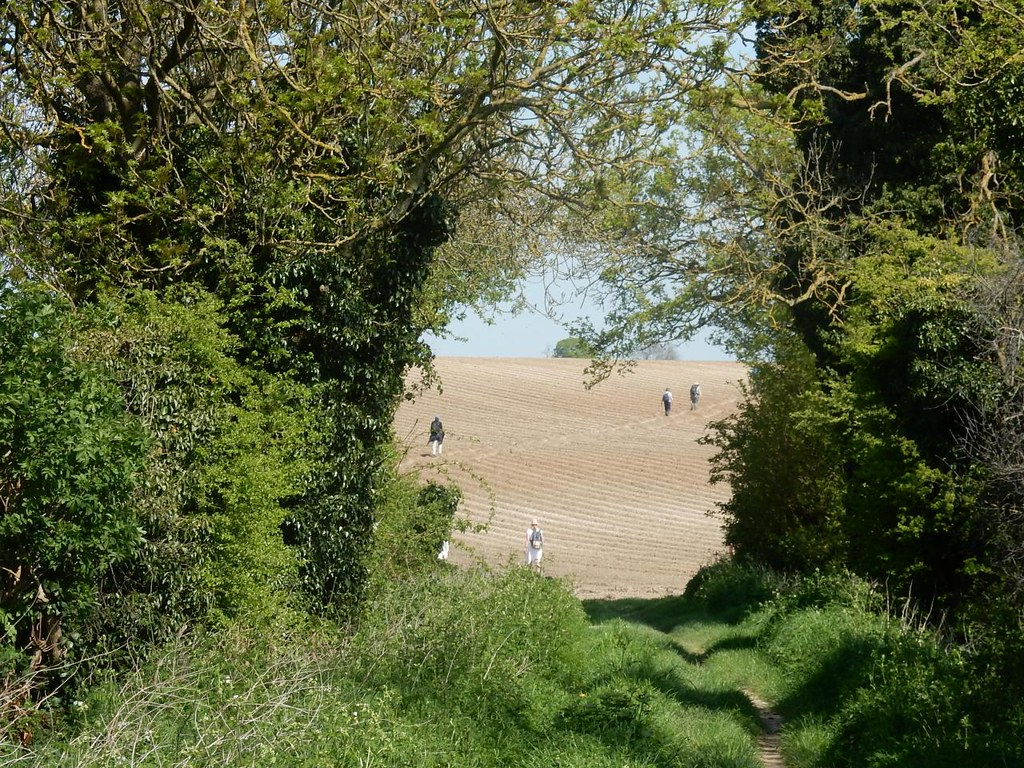 The others Baldock Circular: