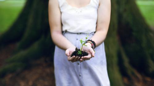 無料写真素材, 花・植物, 人物  花・植物