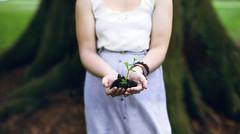 [フリー画像素材] 花・植物, 人物 - 花・植物 ID:201204030600