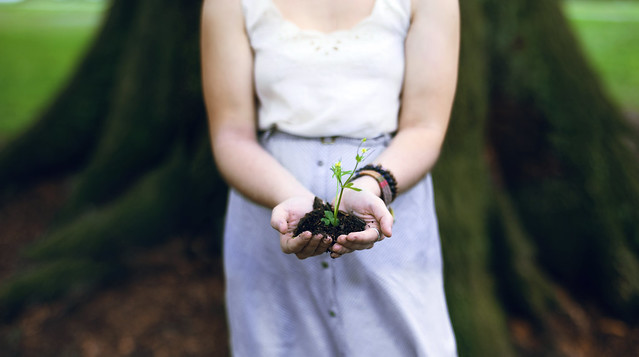Instead of Letting Go of Your Dream Try This: Learning to grow