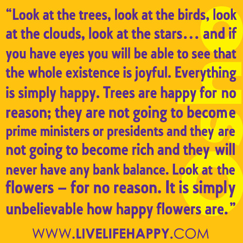 Live Life Happy Page 1114 Of 1155 Inspirational Quotes Stories