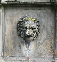 Holyrood lion head