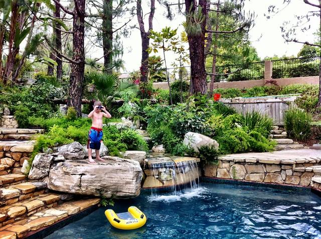 Spring Swimming