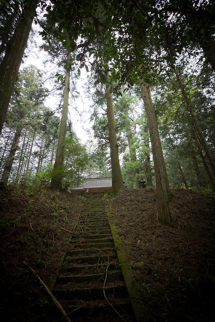 #27 The Giant Cryptomeria of Yagurasan Shrine