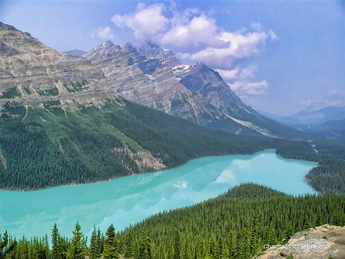 This Photo 'Peyto Lake' was JERRY SEINFELD's selection for his HIT BROADWAY SHOW 'Long Story Short' by Chantal.PhotoPix