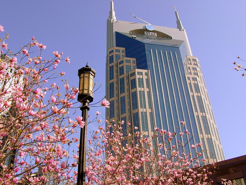 The Batbuilding at Springtime