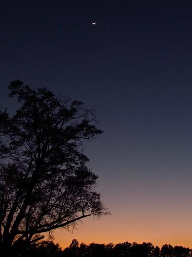 sky moon stars venus charlotte northcarolina astro astrophotography planet astronomy nightsky jupiter charlottenc lunar celestial crescentmoon waxingmoon charlottenorthcarolina conjunction waxingcrescentmoon planetaryconjunction spacemike celestiallineup planetarylineup