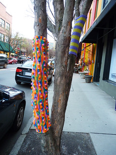 yarn bombing in Asheville