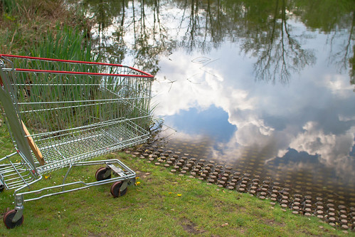 Dreamy Little Shopping Cart