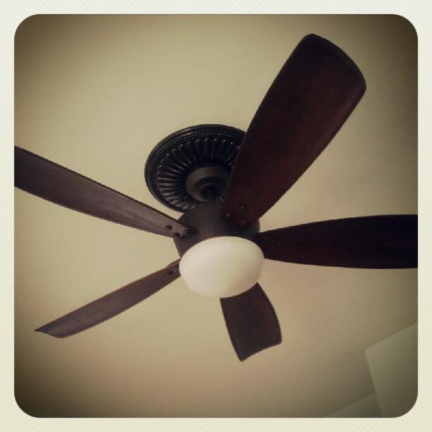 beautiful ceiling fan flickr photo sharing