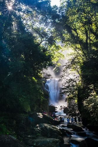 longexposure morning summer people mist color green vertical canon landscape waterfall rocks stream taiwan photographers taipei rays milky 烏來 silky 1635mm 內洞瀑布 ndx8 信賢瀑布 斜射光 內洞國家森林遊樂區 canoneos5dmarkiii