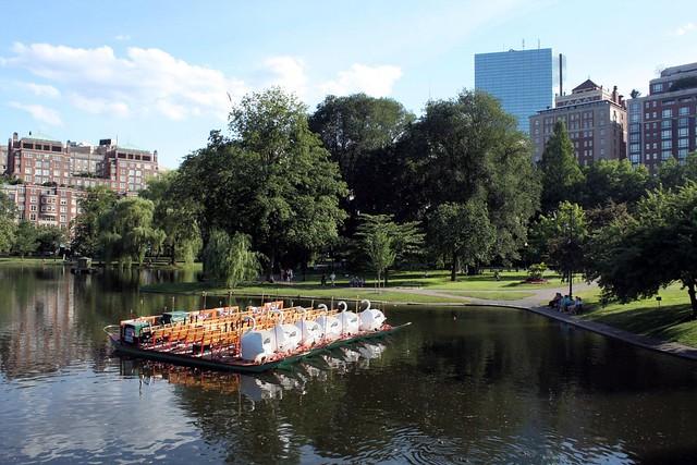 Public Garden Swan Boats