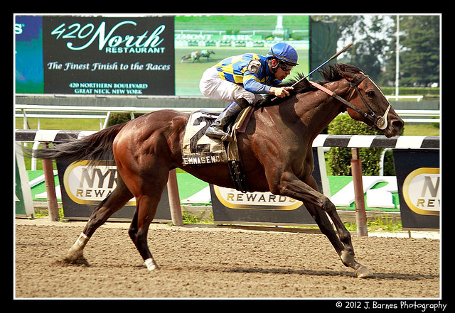 Emma's Encore wins The 10th Running of The Victory Ride (Grade III) (2)