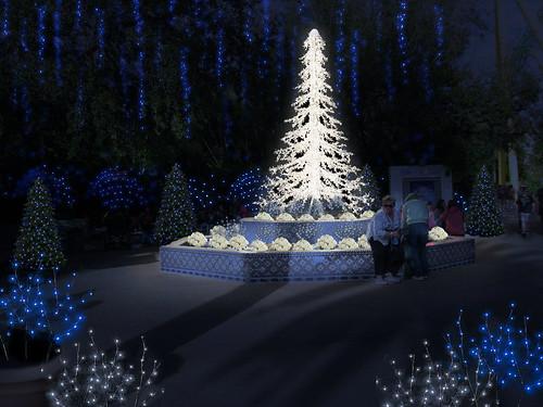 Busch Gardens Christmas Town Tampa.Christmas Town Coming To Busch Gardens Tampa