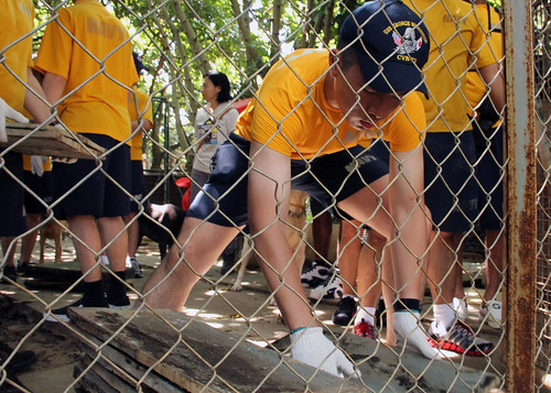Quartermaster Seaman Morris Ng from Hong Kong lays a tile of slate in an enclosure at the Hong Kong Dog Rescue center.
