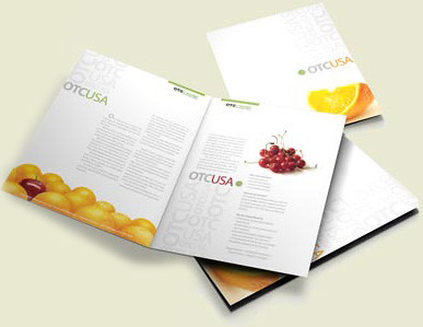 Easy Skills Help You Design Attractive Brochure dans digital publishing 7626655958_bbc2a5970d