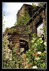 Westwood Mills Huddersfield