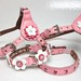 Flowers Cotton Candy Leather Collars and Harnesses