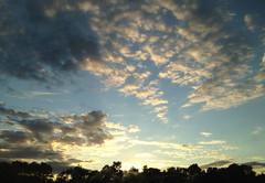Cumulus, I presume?