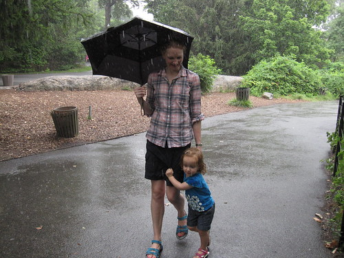 Zoo in the rain