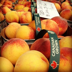 apricot, peach, produce, fruit, food, nectarine,