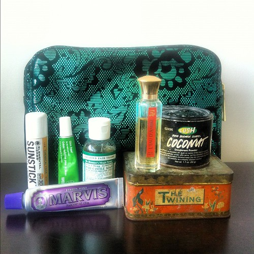 My travel essentials: TOILET TREES! The word toiletries always cracks me up. This is the stuff I use every day when I'm on the road.