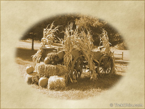 Wagon decked out for fall