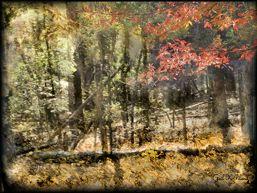 photoshop painting landscape soe textured autofocus sharingart awardtree gailpiland blinkagain rememberthatmomentlevel1 rememberthemomentlevel1
