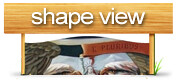 shape_view_logo