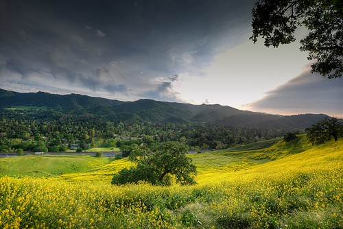 california evening spring nikon alamo d800 2014 1635mm stonevalleyroad