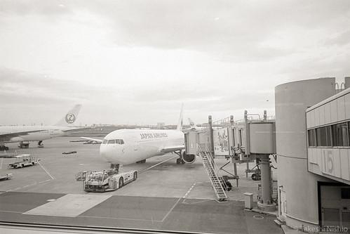JL191, Gate 15