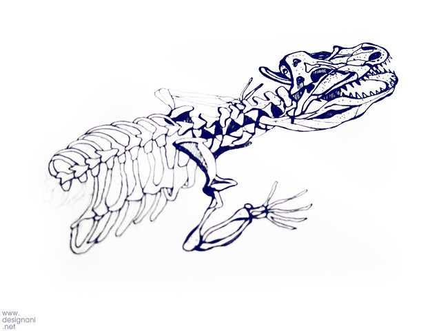 Work in progress_Crocodile skeleton