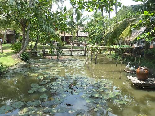 V 12-Ho Chi Minh-Parc-Maries (9)