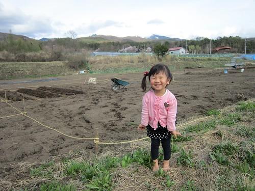 畑で遊ぶ孫娘 2012年5月1日16:16 by Poran111