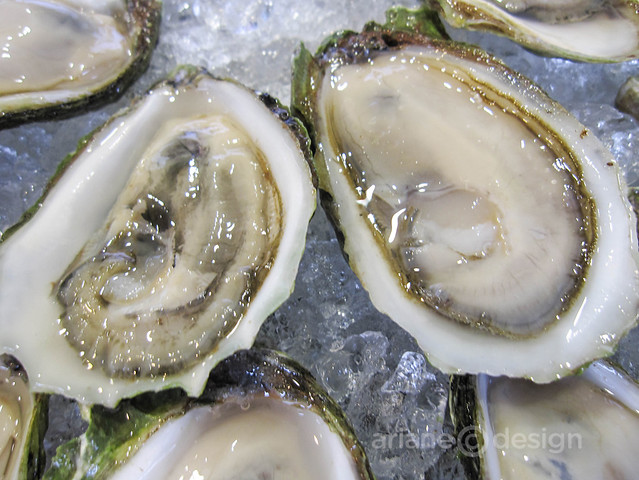 Colville Bay (PEI) Oysters on a Half Shell