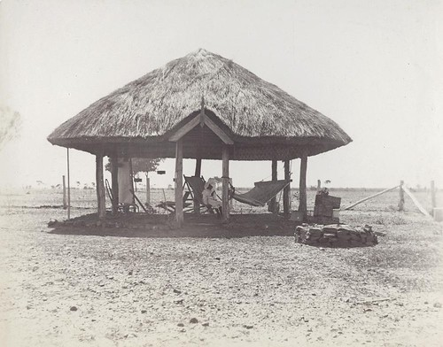 Bush house at Isis Downs