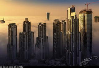 Foggy Business Bay