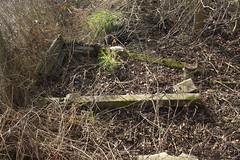 20120224 004 Croxley Green Depot Headshunt Remnants