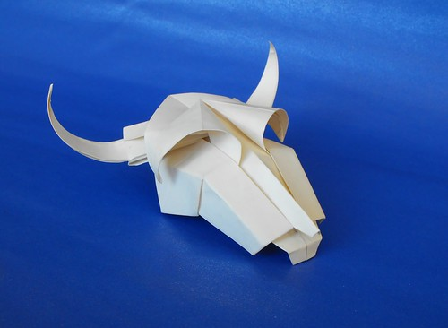 Cow's skull