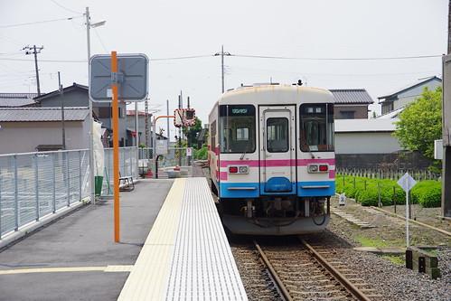 IMGP6531