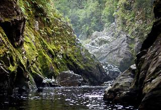 Edwardson Sound, Chalky Inlet, Fiordland