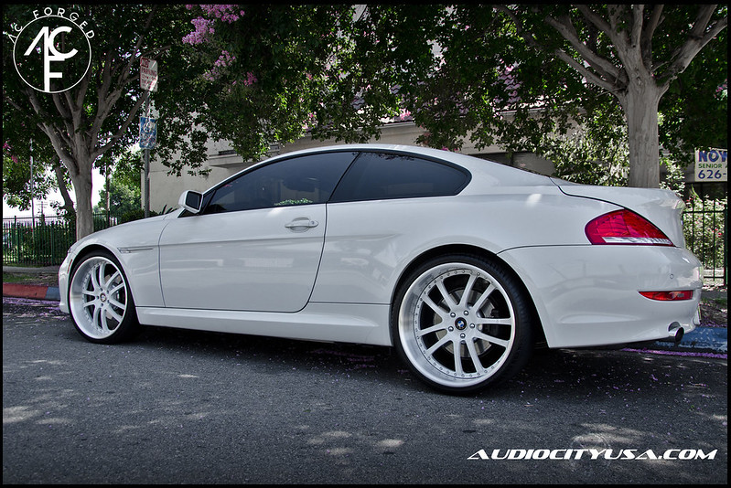 AC Forged 312 brushed lip alpine white face