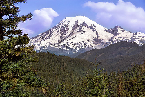 Picture Postcard for you of Mt Rainier