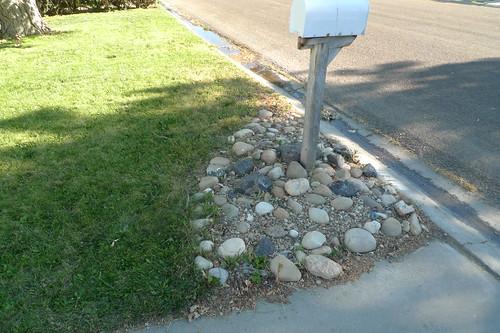 mailbox garden before