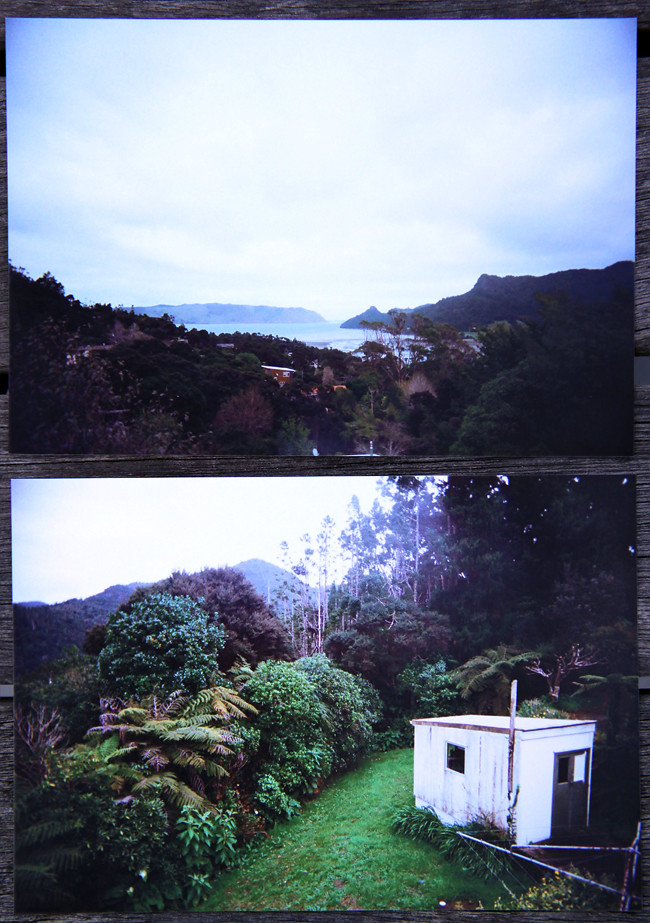 Wide-Angle Lens Camera