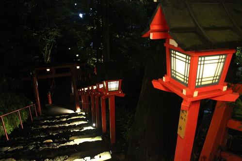 Toro lightup