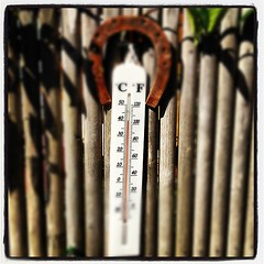 #degré #température #celcius #canicule #chaleur #40 #calor #hot #sun #soleil #khanelle #prod #medias #thermometre - Photo of Saint-Martin-de-Bréthencourt