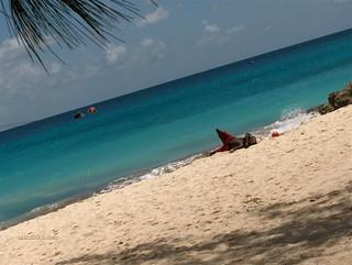 Lone man on beach